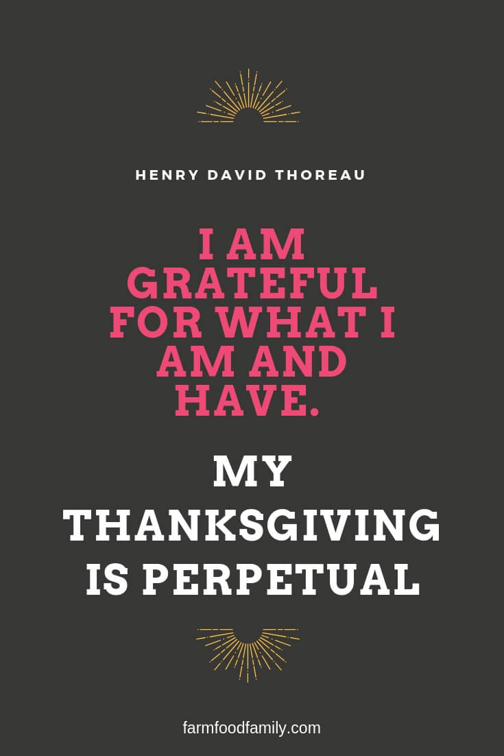 30 Inspirational Thanksgiving Quotes For Friends And Family