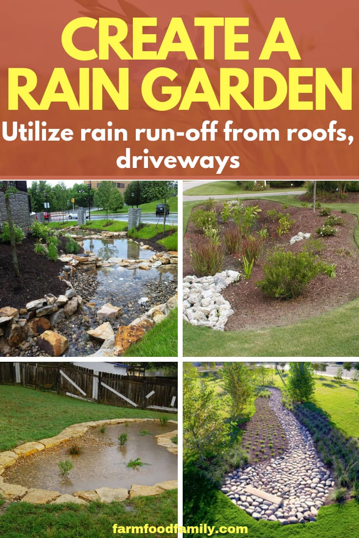 Create a Rain Garden, Utilize Rain Run-off from Roofs, Driveways