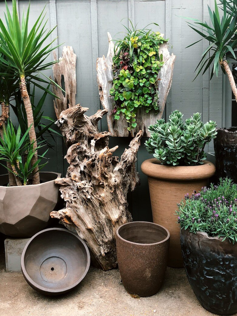 Prepare Your Container and Plant Your Garden