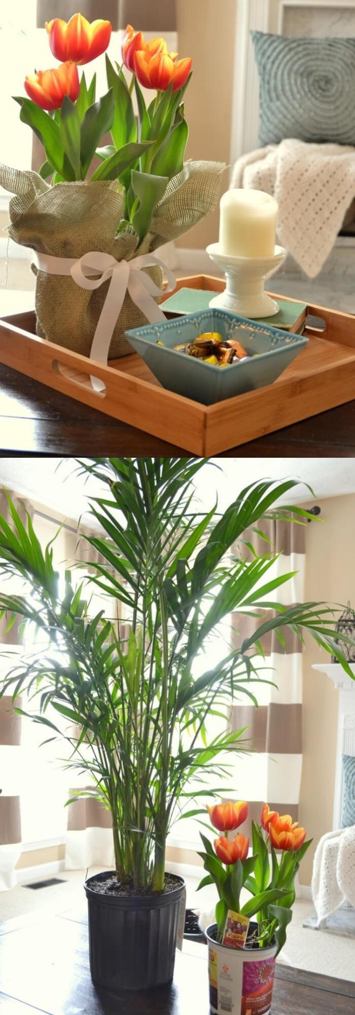 Bringing in Spring in the Living Room | Spring Spruce-Up - Quick, Cheap Home Décor Ideas | FarmFoodFamily.com