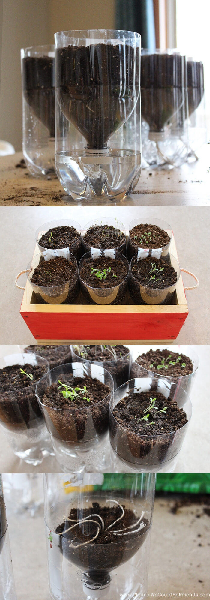 Self watering Herb garden | Best DIY Self-Watering System Ideas