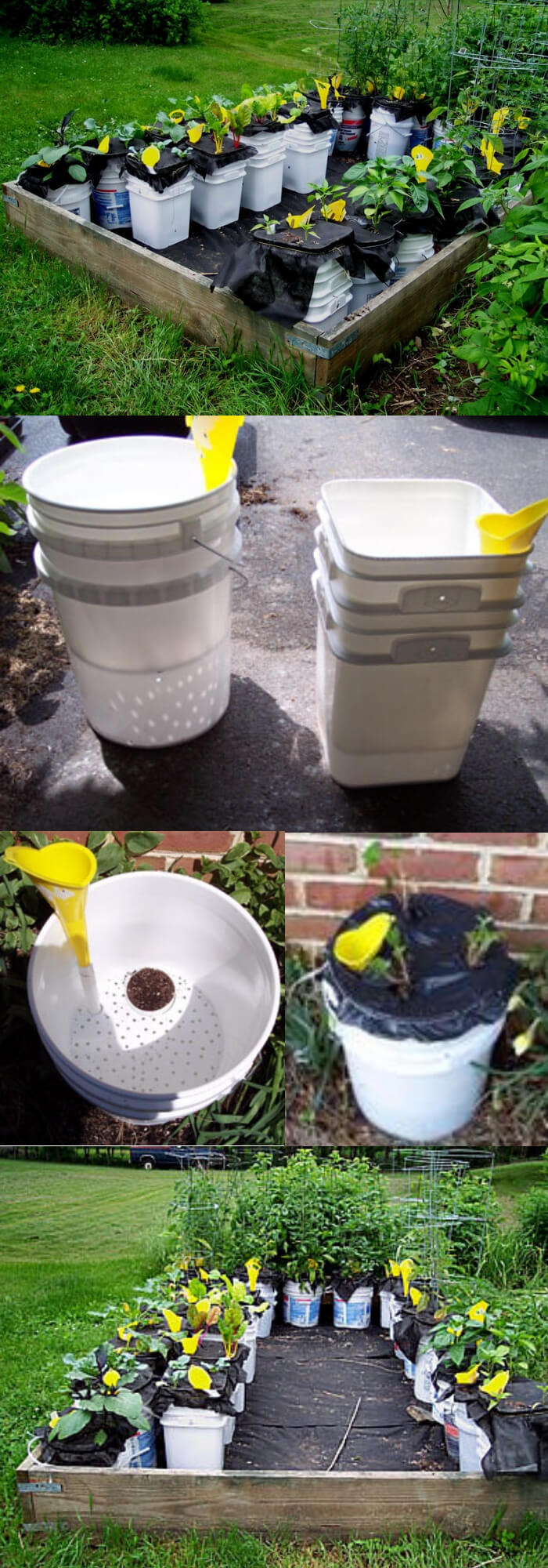 Self watering containers | Best DIY Self-Watering System Ideas