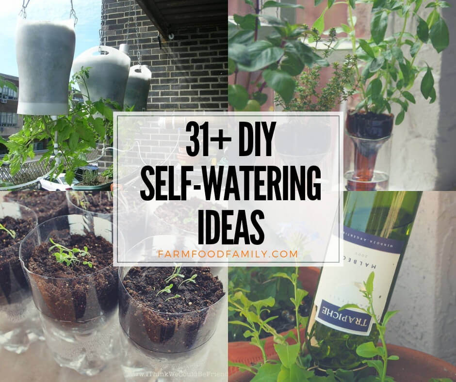 31 Clever Diy Self Watering Container Garden Ideas When