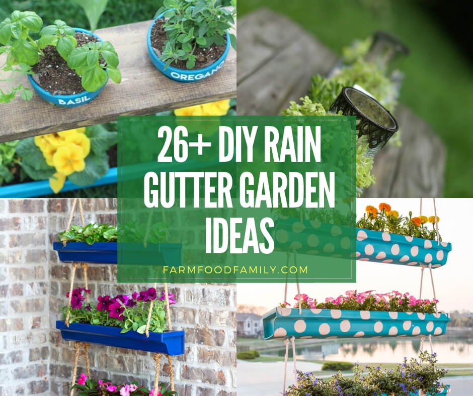 26+ Clever DIY Vertical Gutter Garden Ideas For Small Spaces