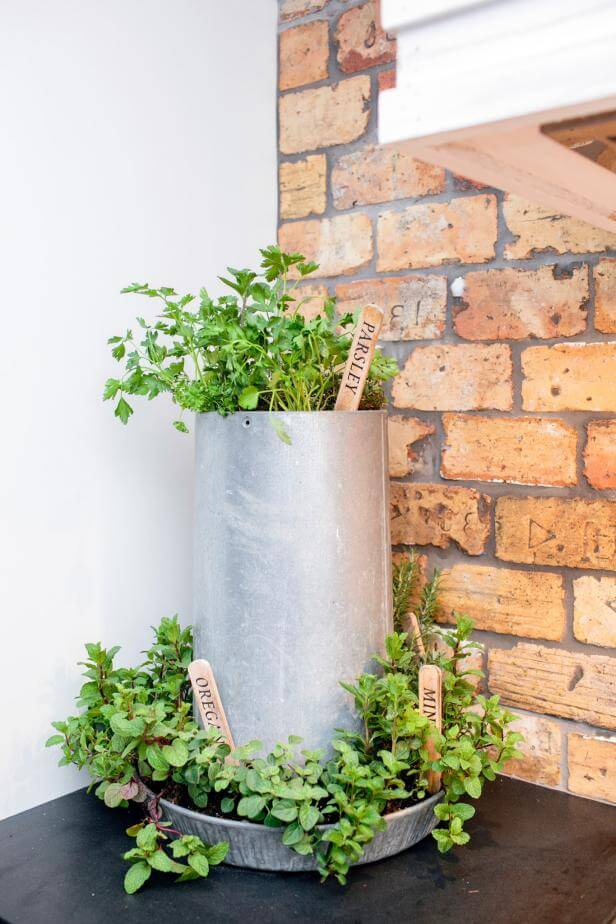Recycled herb container | Best Farmhouse Indoor Plant Decor Ideas & Designs
