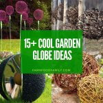 Best garden globe ideas