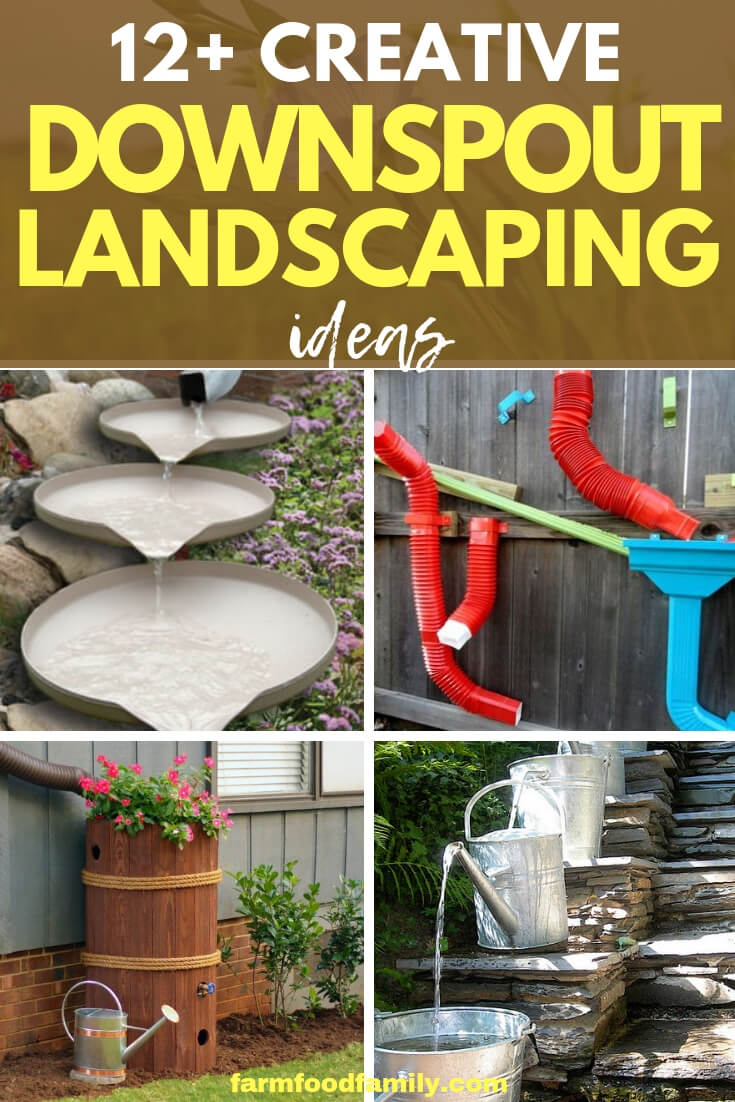 Best Downspout landscaping ideas