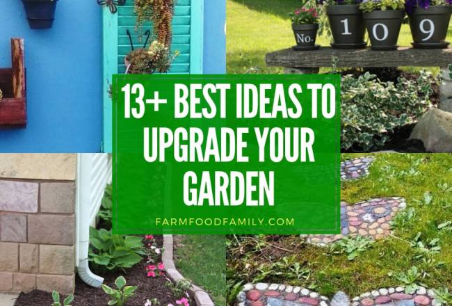 13+ Best DIY Ideas To Upgrade Your...