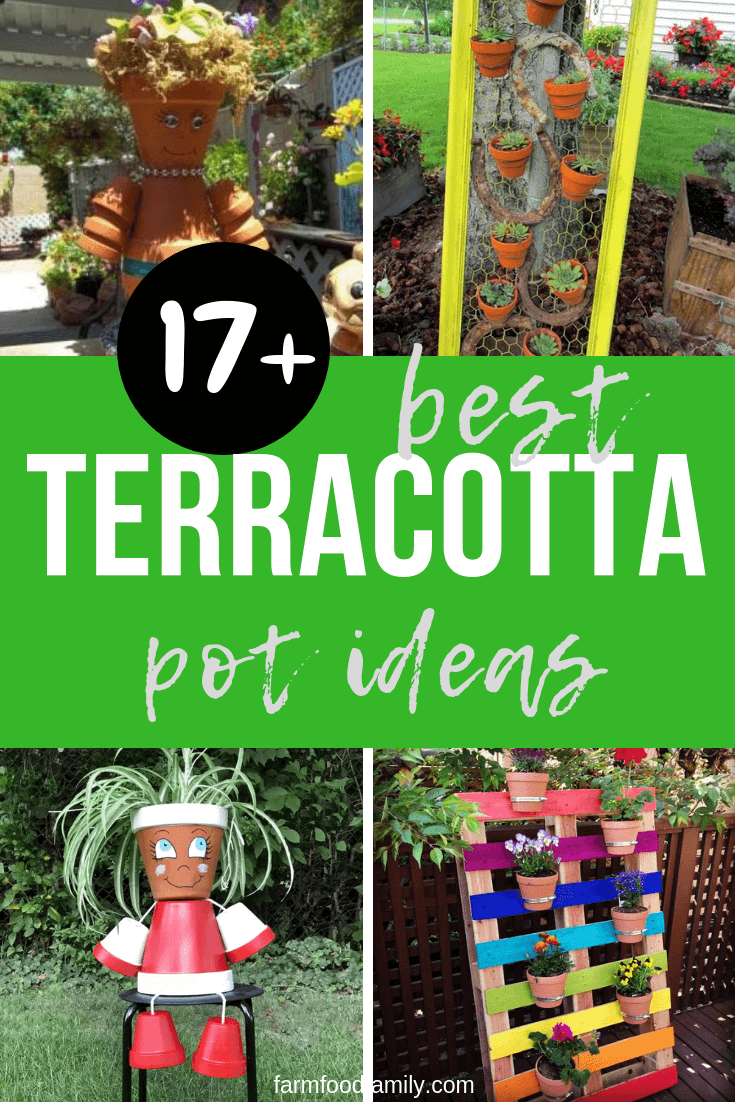 Best Garden Ideas Using Terracotta Pots