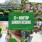 Best rooftop garden ideas and designs