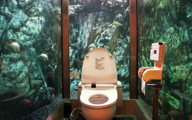 bathroom surrounded by glass walls where you can see fish
