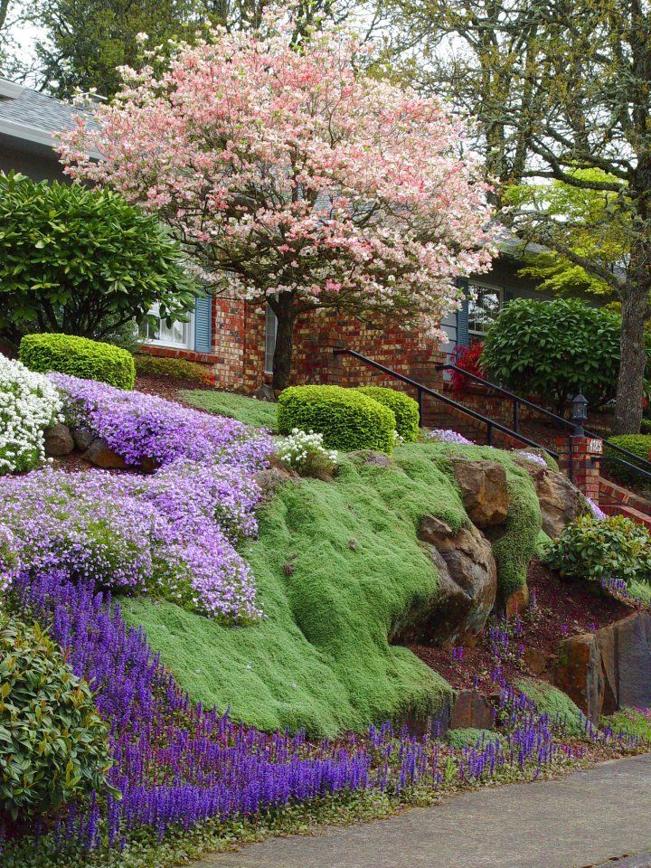 17+ Sloping Garden Ideas with Ground Covers - FarmFoodFamily on Sloping Garden Ideas id=75393