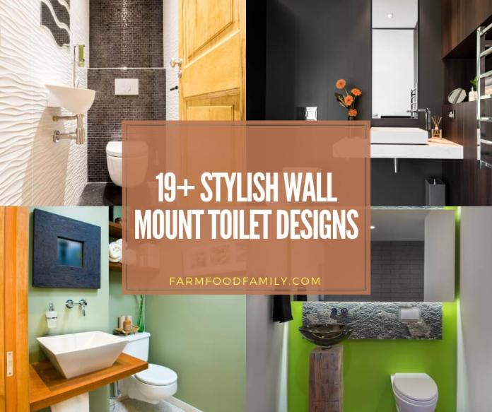Wall mount toilet designs