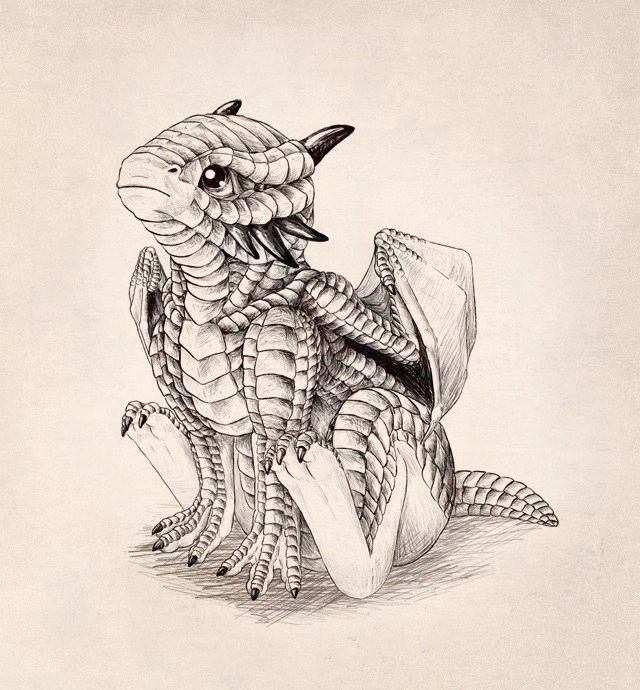 17+ Dragon Drawings (Cool, Cute, Easy) For Your and Your Kids