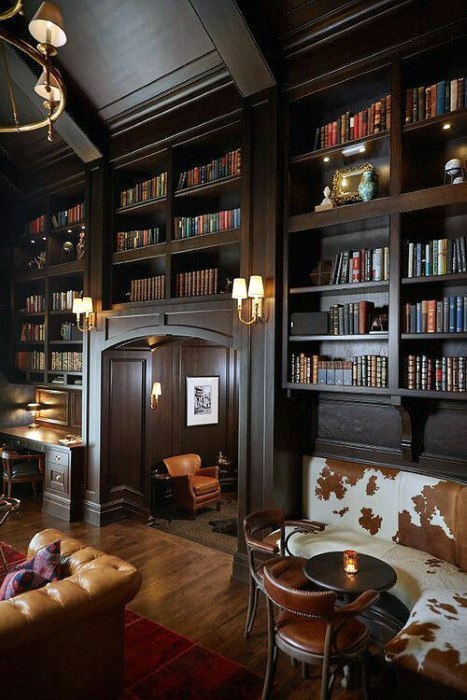 Reading Room Cool Man Cave Ideas