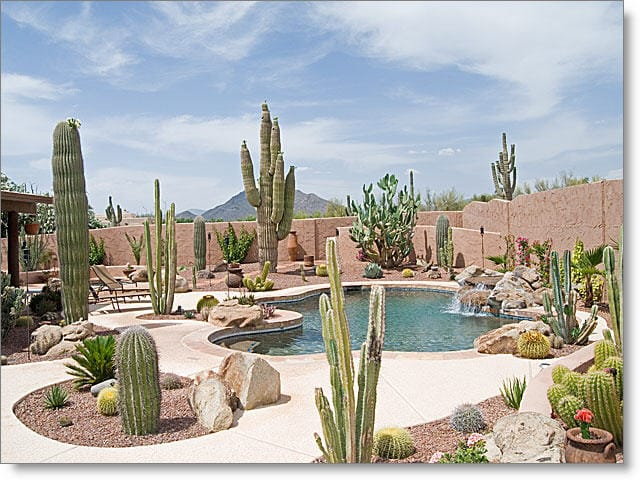 Midwest Arizona backyard ideas