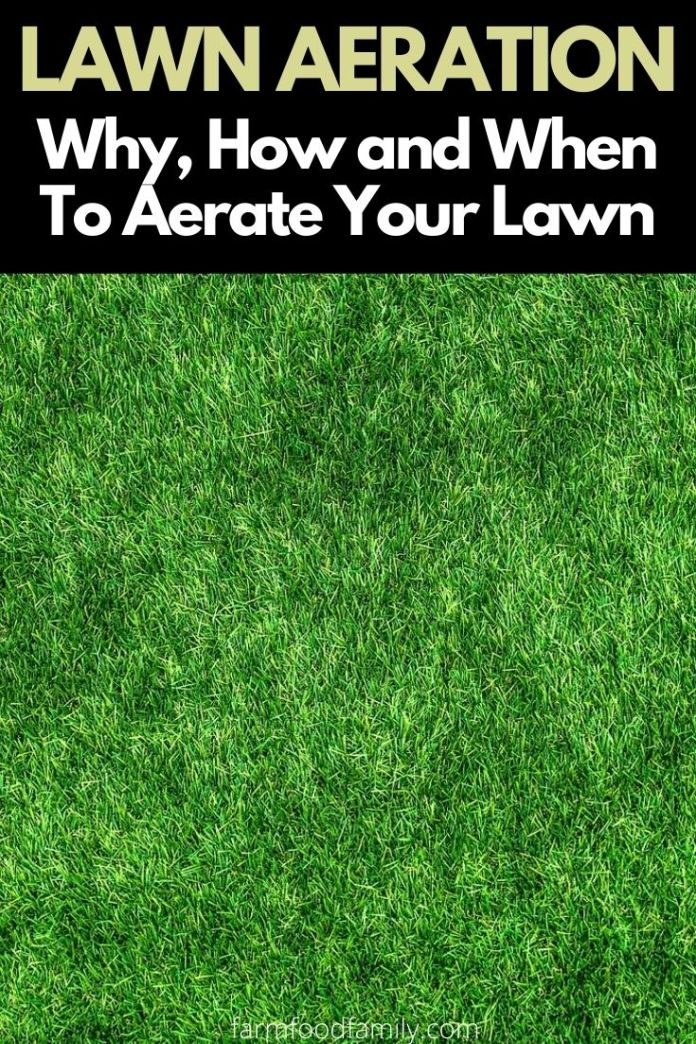 What is lawn aeration? Why, when and how to aerate your lawn