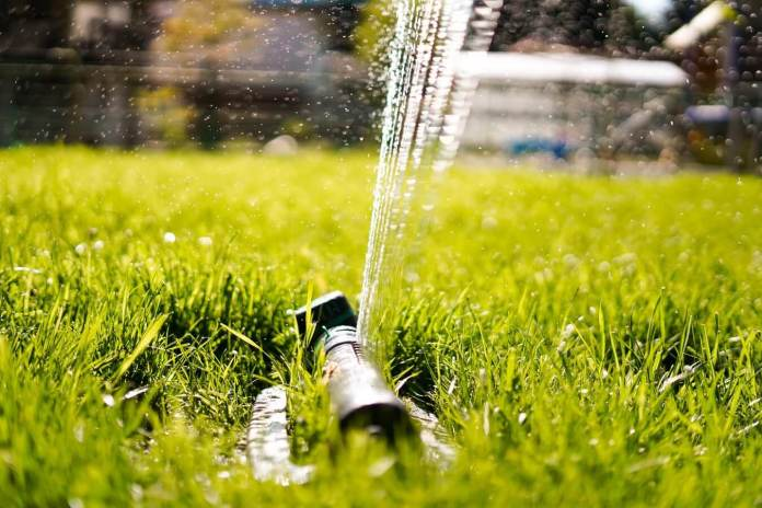 Why Do You Need a Sprinkler System?