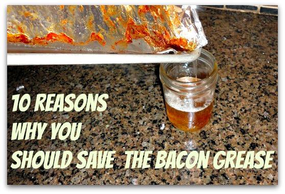 bacon grease 10