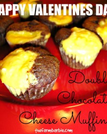 Double Chocolate Cheese Muffins!