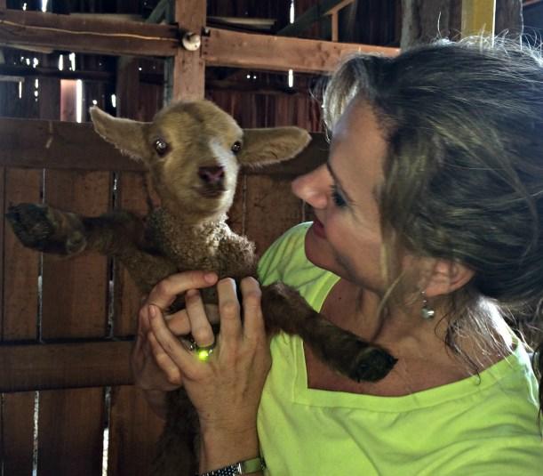 goat 5
