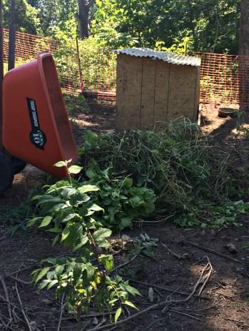 garden prob 7