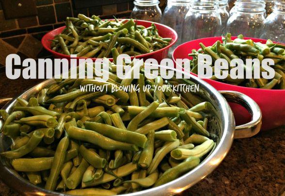 beans 7