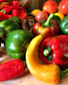 How to Grow Colorful Peppers