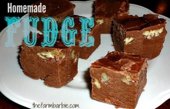 fudge 1.3