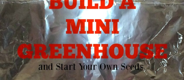 Start Your Seeds Indoors #1 – Building the Light Hut – Easy. Fast. Cheap.