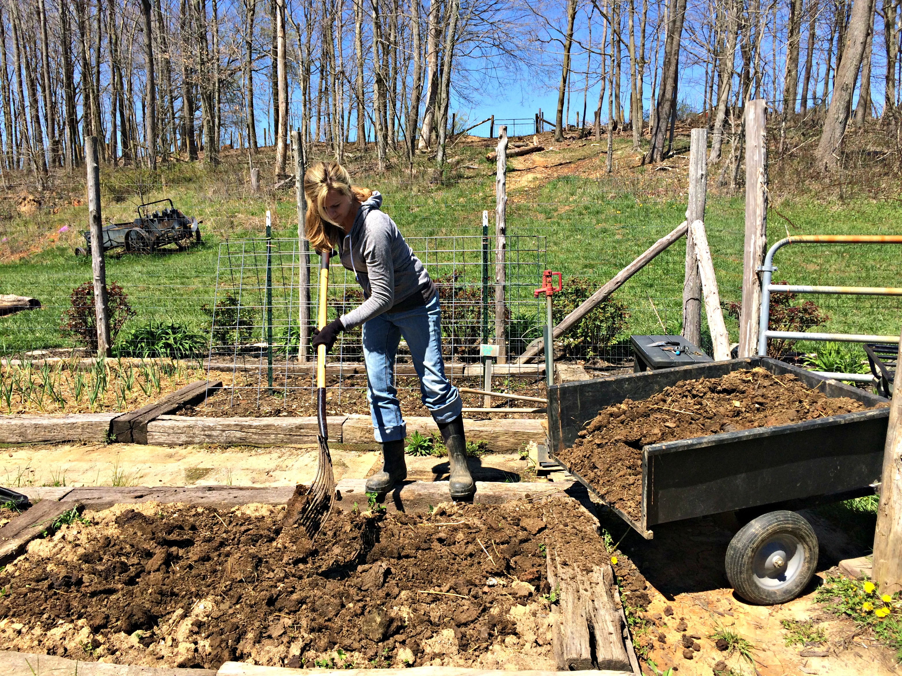 how to add manure to garden