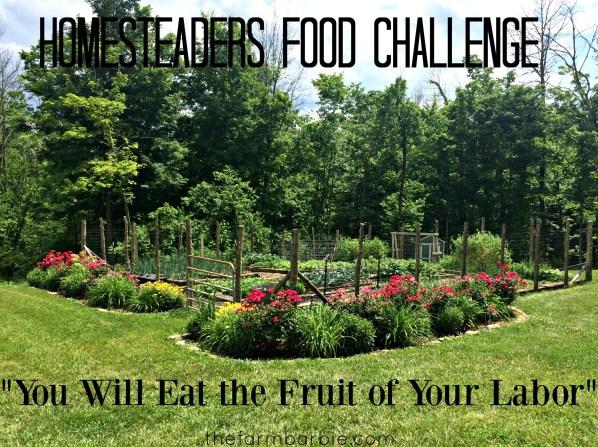 food challenge 1