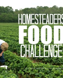 Homesteaders Food Challenge- Week 1