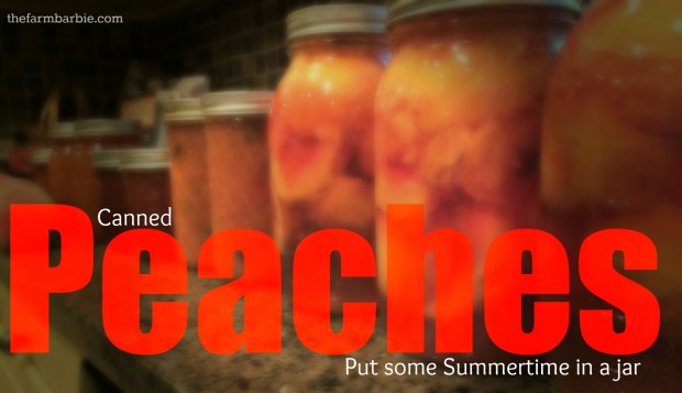 peach day 2.3
