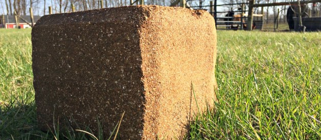 If You Have Livestock (Cows, goats, sheep) and Your Grass is Turning Green – It's Magnesium Time!!