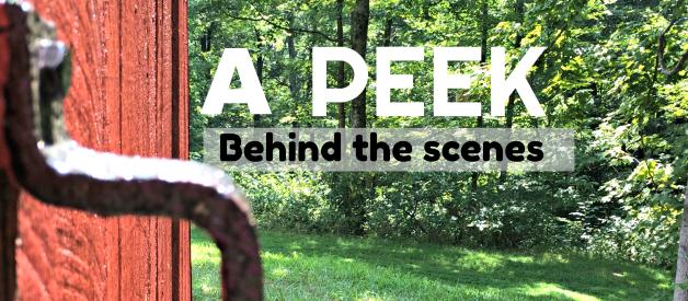 A Peek Behind the Scenes & My 3 Day Reset Diet (Premium)