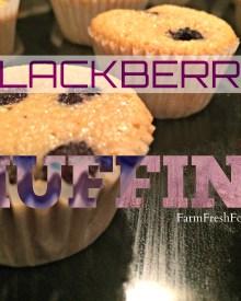 No Sugar Blackberry Muffins (Premium)