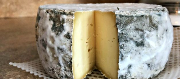 How to Make Cheese with Raw Milk – 10 Tips for Beginners (or anyone)