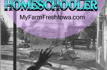 blog homeschool day in the life