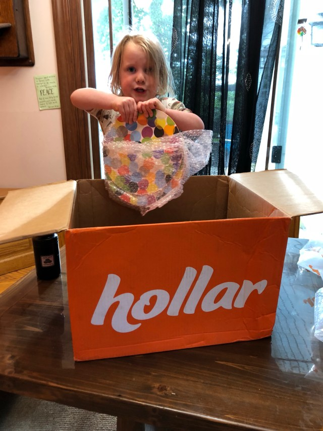 hollar review dollar store online