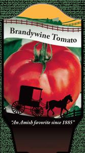 sv-brandywine_tomato-tag2
