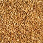 Coles-HM20-20-Pound-Hot-Meats-Seed-0-0