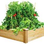 Greenes-Fence-Cedar-Raised-Garden-Bed-4-Ft-X-4-Ft-X-105-In-0