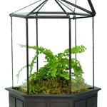 H-Potter-Six-Sided-Glass-Terrarium-Planter-0