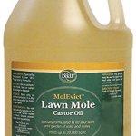 Lawn-Mole-Castor-Oil-MolEvict-Gallon-0