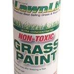Lawn-Paint-Concentrated-Lawn-Paint-0