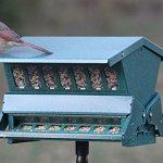 Woodlink-Absolute-II-Squirrel-Resistant-Bird-Feeder-Model-7536-0-1