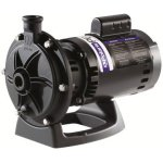 Zodiac-PB4-60-Polaris-Booster-Pump-with-60-Hertz-Motor-0