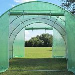 DELTA-Canopies-Greenhouse-10×10-B2-54-lbs-Green-House-Walk-in-Hot-House-By-0-1