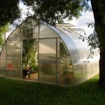 Exaco-Trading-RIGA-XL-8-Professional-Greenhouse-0